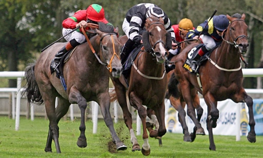 AC's Free Horse Racing Tips