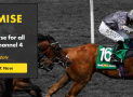 Horse Racing Best Odds – Channel 4 Bet365 Price Promise