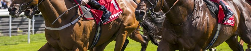 G3 Sceptre Stakes at Doncaster