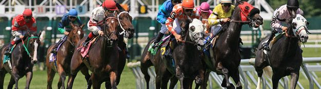 Past Free Horse Racing tips by AC