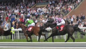 Past Horse Racing tips by AC