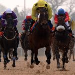 Horse Racing tips for Chelmsford