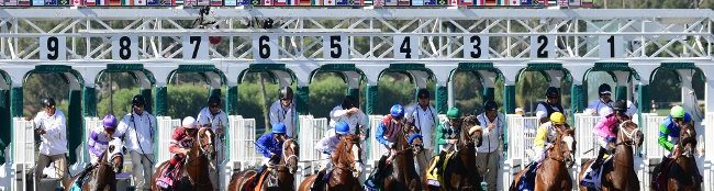 Get Extra places each way in the Breeders Cup
