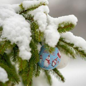 White Christmas Odds Slashed