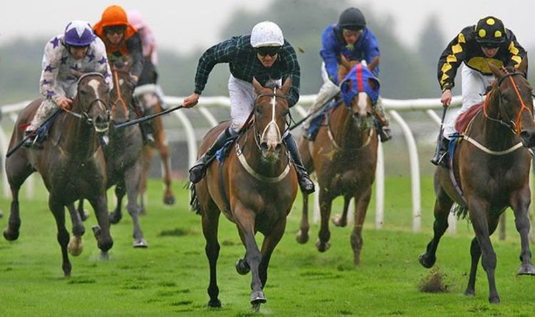 Horse racing tips TODAY: The horses you must back at Hereford, Kempton | Racing | Sport