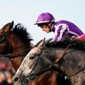 Horse racing tips TODAY: Horses you MUST back at Doncaster, Lingfield and Newcastle   Racing   Sport