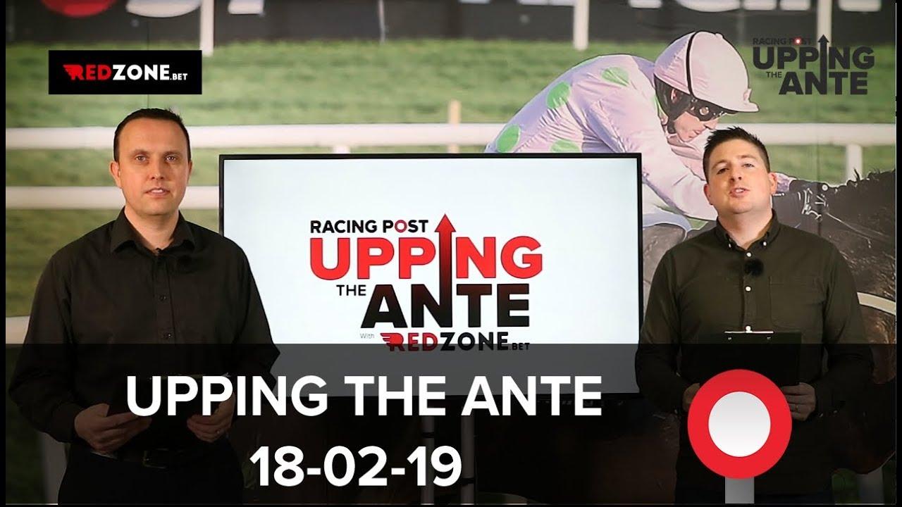 Upping The Ante Cheltenham Festival Preview: Week Twelve