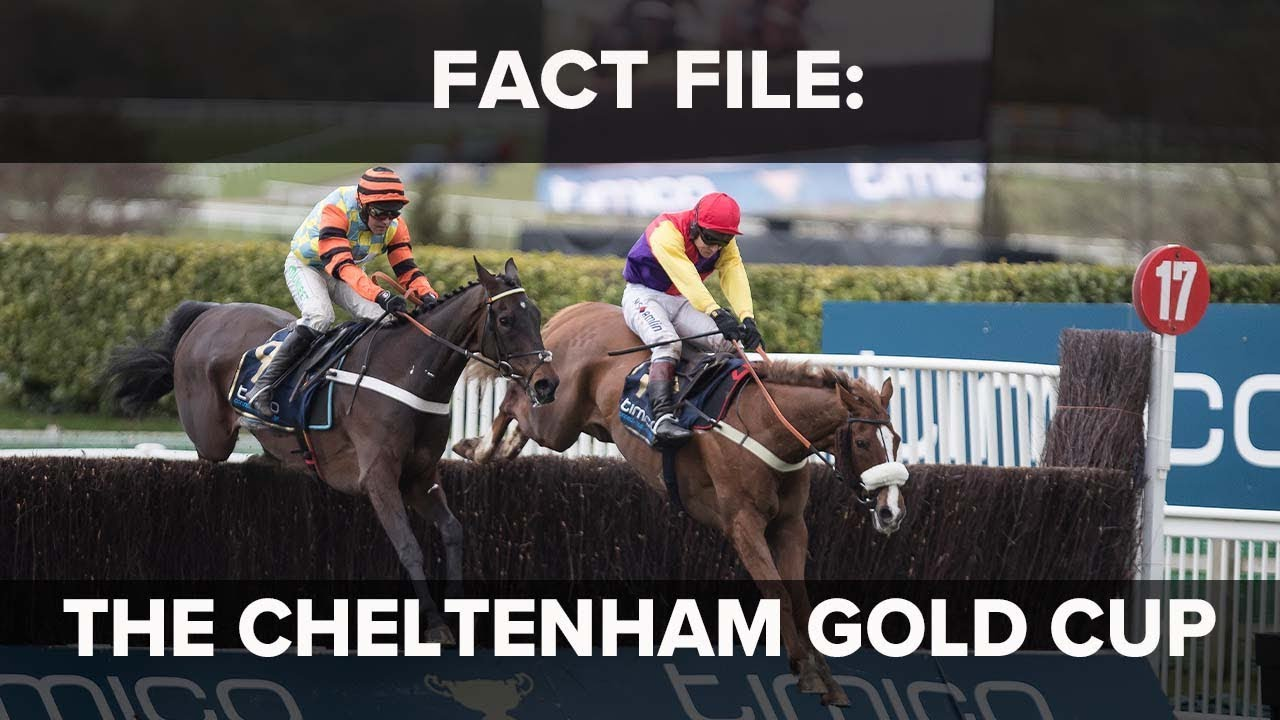 Fact File: Cheltenham Festival Gold Cup