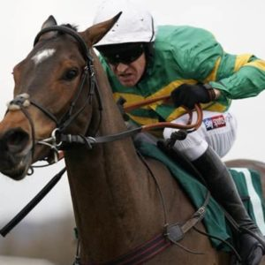 Cheltenham 2019: Will Cheltenham be CANCELLED this year as equine flu wipes out horses? | Racing | Sport