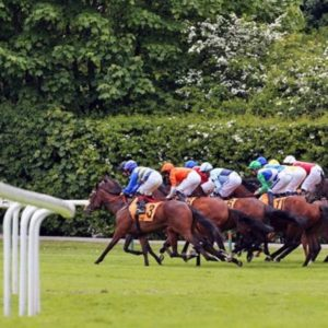Horse racing tips TODAY: Horses you MUST back at Ascot, Lingfield | Racing | Sport