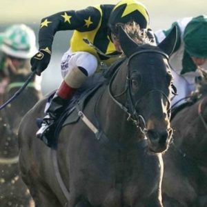 Horse racing tips TODAY: Horses you MUST back at Lingfield, Carlisle and Newcastle | Racing | Sport