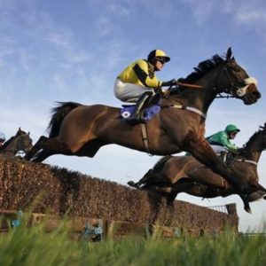 Horse racing tips TODAY: Horses you MUST back at Taunton, Wetherby | Racing | Sport