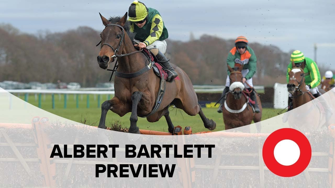 Cheltenham 2019: Albert Bartlett preview