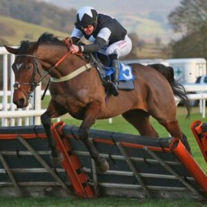 Horse racing tips TODAY: Horses you MUST back at Ludlow, Sedgefield and Chepstow | Racing | Sport