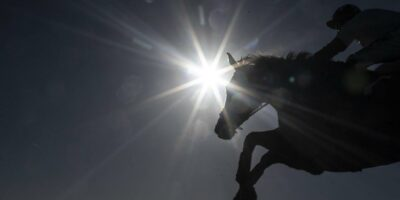 Sunday 24 March 2019 US Horse Racing Tips