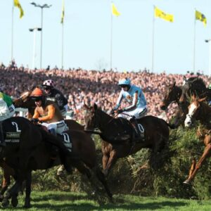 The Perfect Grand National Horse