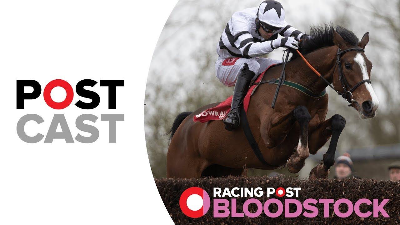 Bloodstock Postcast: Derek O'Connor | Goffs Aintree Sales | Grand National 2019