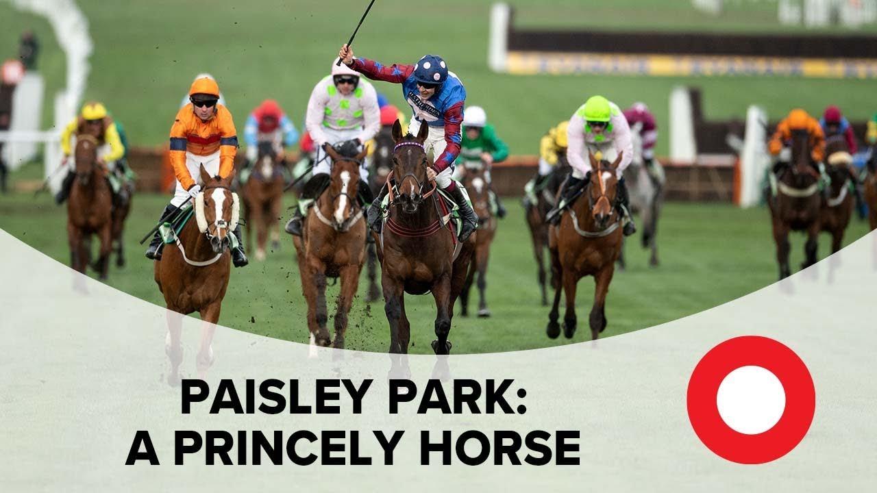 Cheltenham 2019: Paisley Park - a Princely horse