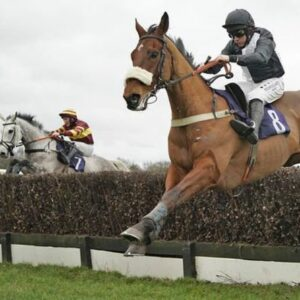 Horse racing tips TODAY: Horses you MUST back at Bath, Lingfield and Newcastle   Racing   Sport