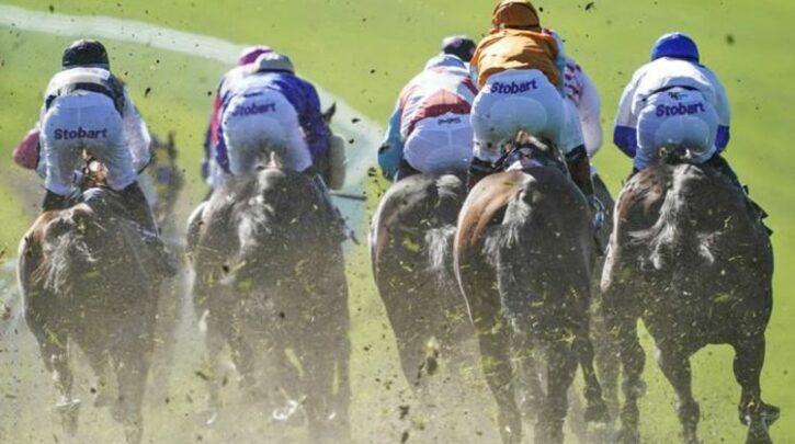 Horse racing tips TODAY: Horses you MUST back at Brighton, Carlisle | Racing | Sport