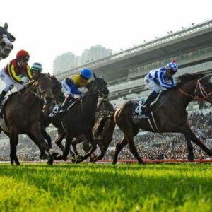Horse racing tips TODAY: Horses you MUST back at Chelmsford, Ludlow and Newcastle   Racing   Sport