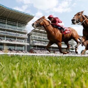 Horse racing tips TODAY: Horses you MUST back at Exeter, Newmarket and Wolverhampton   Racing   Sport