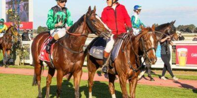 Horse racing tips May 15: Horses you MUST back at Bath, Perth and Newton Abbot   Racing   Sport
