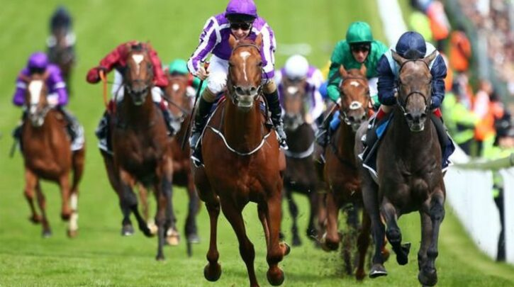 Horse racing tips TODAY: Chelmsford, Chepstow, Goodwood, Lingfield and Sandown | Racing | Sport
