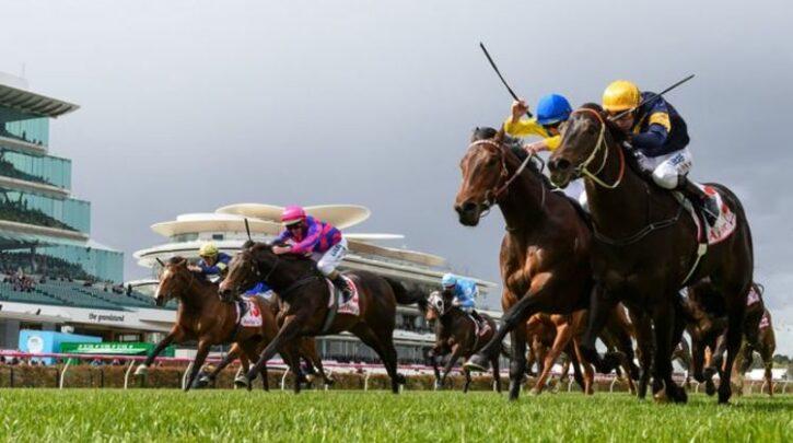 Horse racing tips TODAY: Doncaster, Goodwood, Hexham