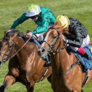 Horse racing tips TODAY: Horses you must back at Aintree, Hamilton, Newbury and Newmarket   Racing   Sport