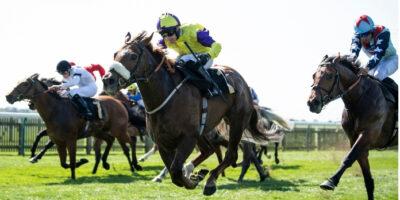 York Preview – Wednesday   RaceBets Blog EN