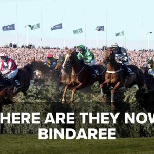 Where Are They Now? Bindaree