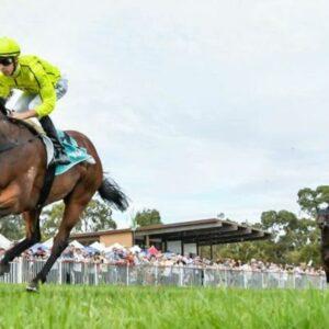 Horse racing tips June 6: Horses you MUST back at Chelmsford, Ffos Las, Hamilton, Haydock