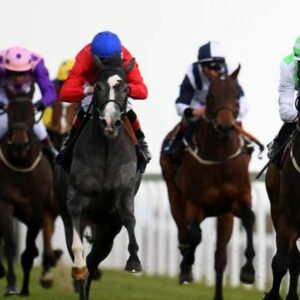 Horse racing tips TODAY: Horses you MUST back at Bath, Brighton, Goodwood, Haydock | Racing | Sport