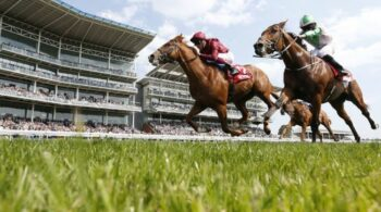 Horse racing tips TODAY: Ripon, Newbury, Newmarket, Doncaster, Haydock, Curragh | Racing | Sport