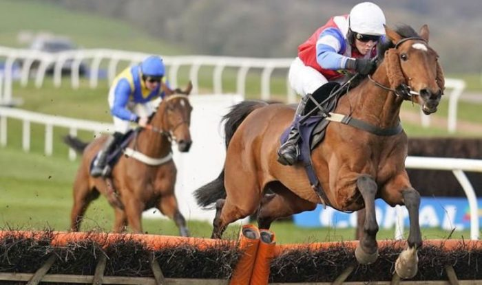 Horse racing tips August 22: The horses you must back at Chepstow, Leicester, York | Racing | Sport