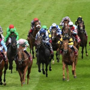Horse racing tips today: Horses you must back at Goodwood, Newmarket, Chelmsford, Windsor | Racing | Sport