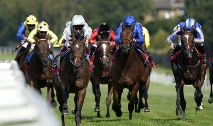 Horse racing tips today: Horses you must back at Brighton and Worcester