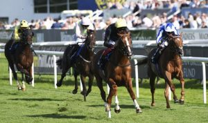 Horse racing tips today: Horses you must back at Chester, Doncaster, Lingfield, Chelmsford | Racing | Sport