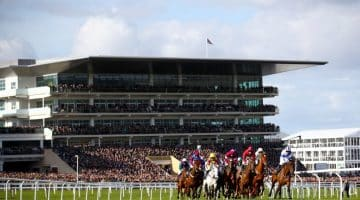 Top 5 Betting Moments From Cheltenham Festival
